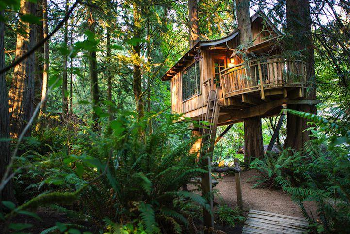 treehouse13_mini