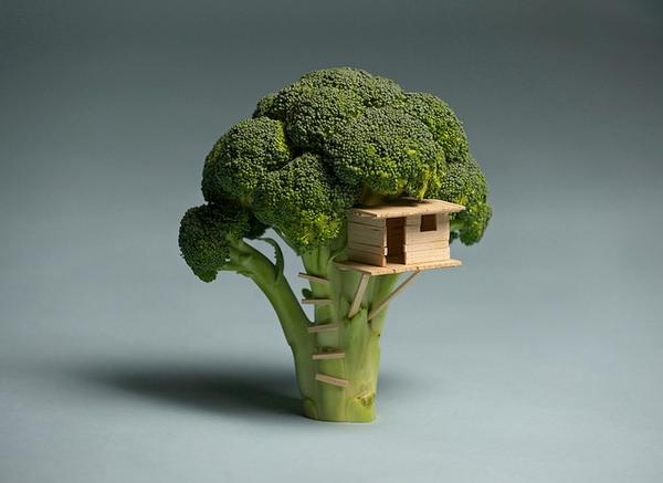 broccolehouse-01_mini
