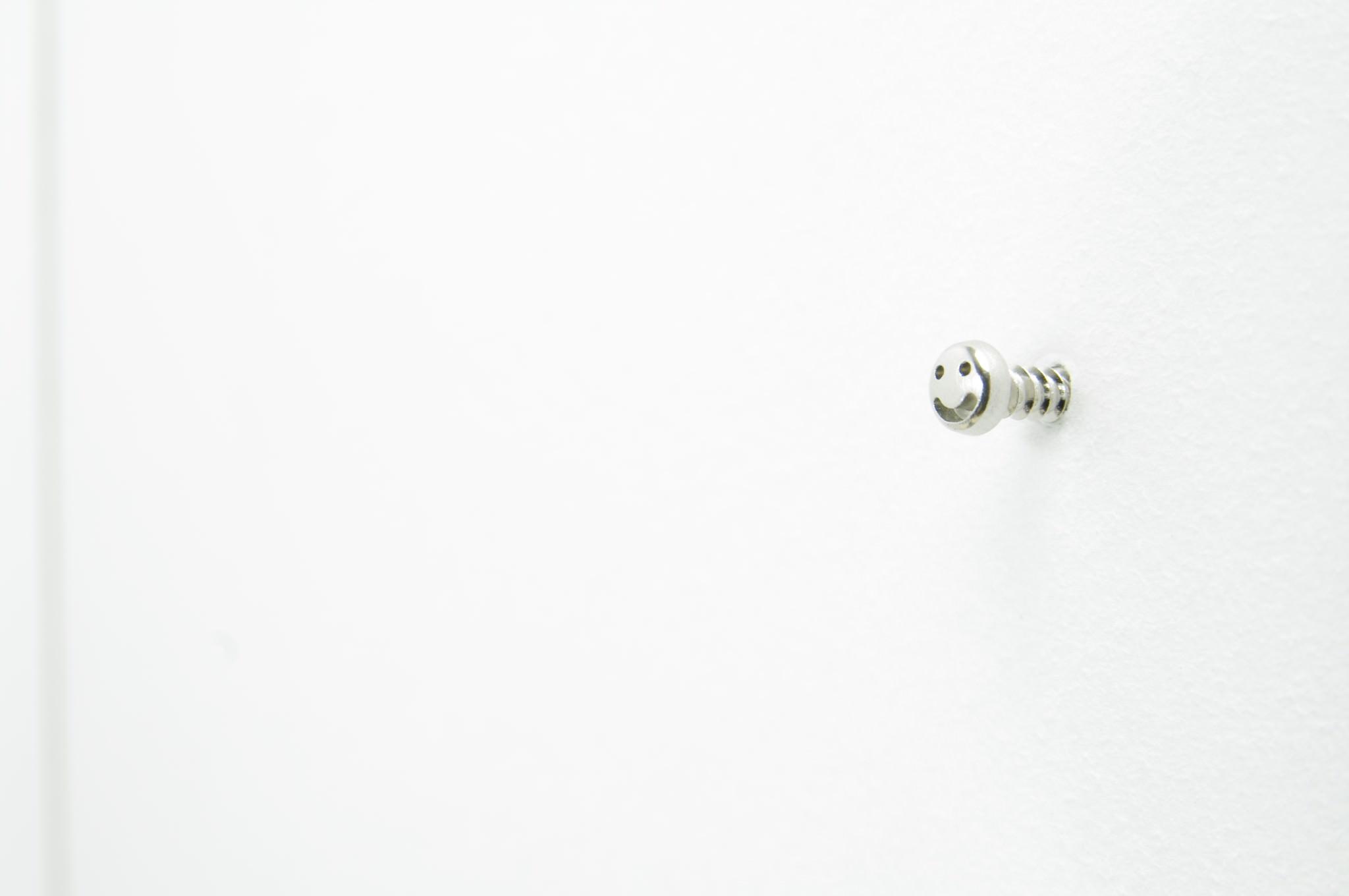 screw_10-2048x1360_mini