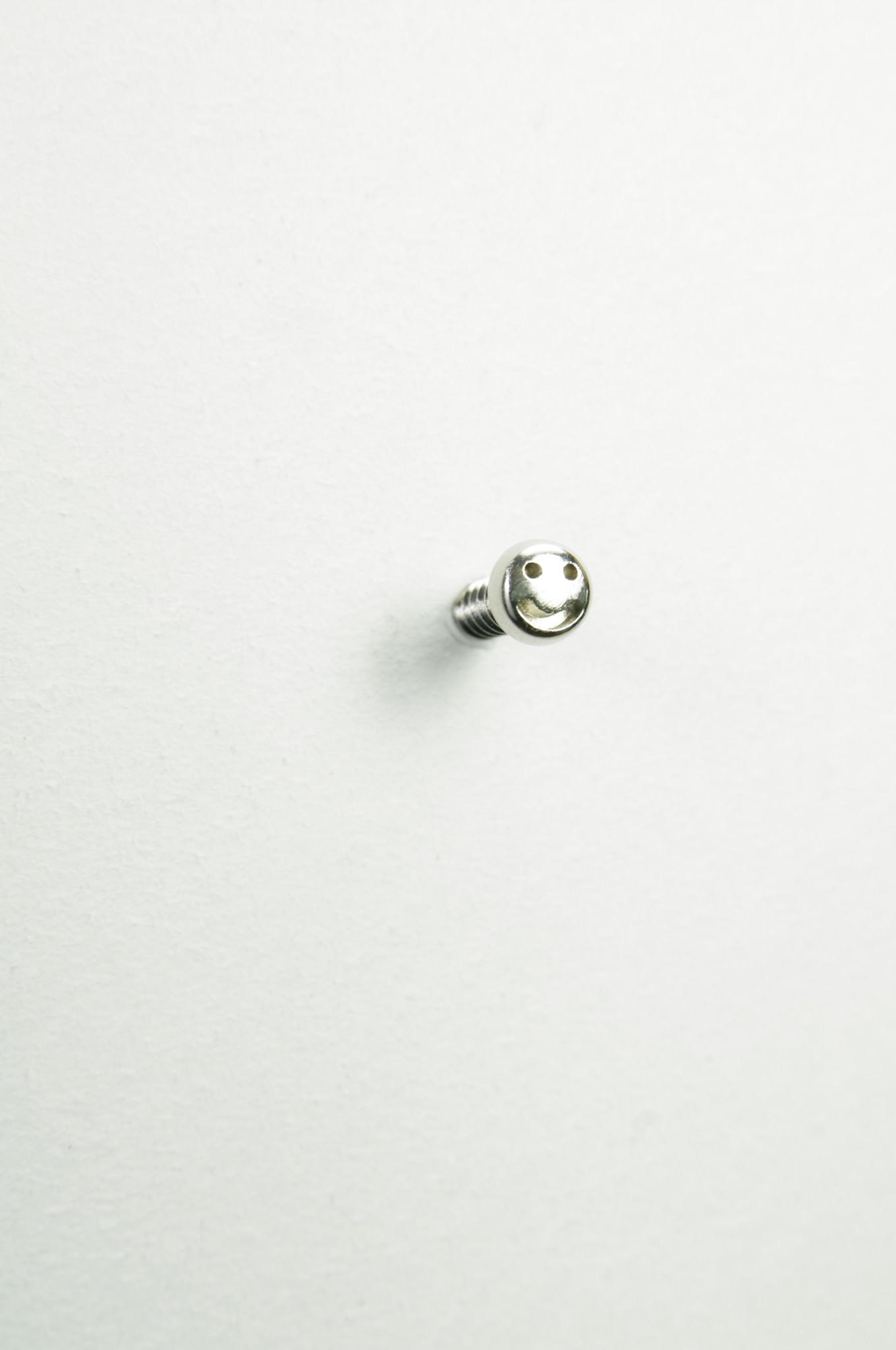 screw_13-1360x2048_mini